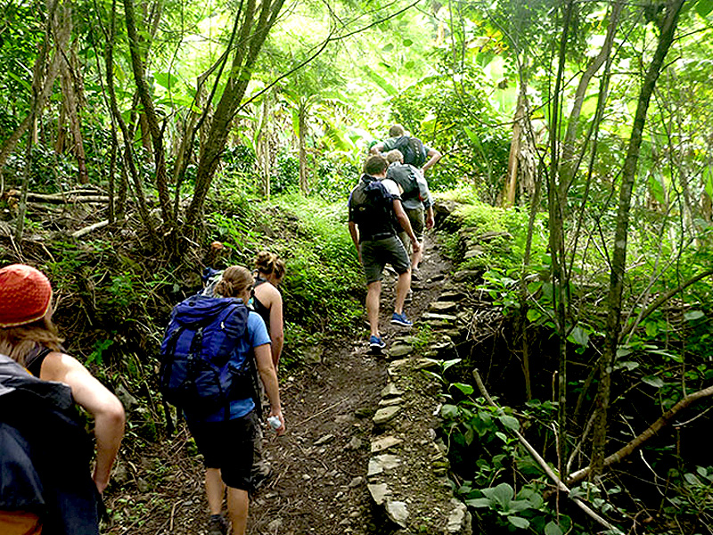 Inca Jungle Trail 4 Days